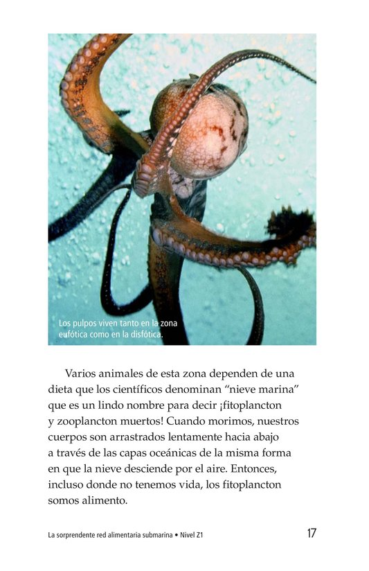 Book Preview For The Amazing Undersea Food Web Page 17