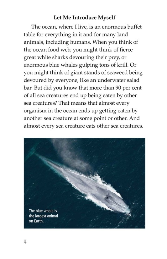 Book Preview For The Amazing Undersea Food Web Page 4