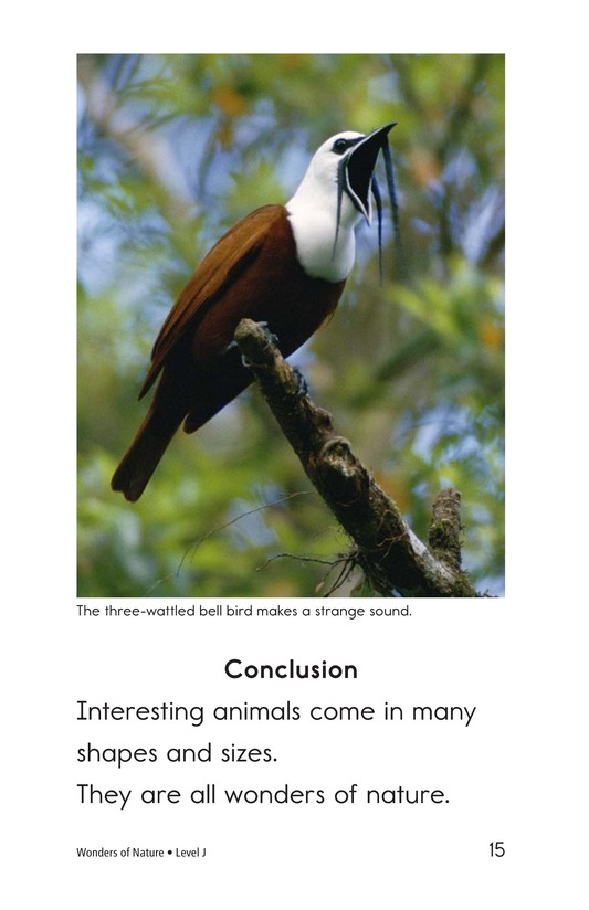 Book Preview For Wonders of Nature Page 15