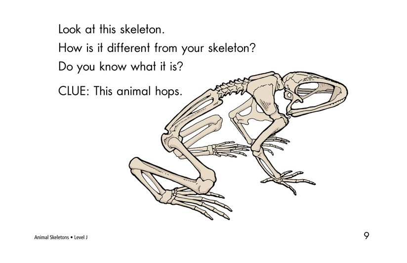 Book Preview For Animal Skeletons Page 9