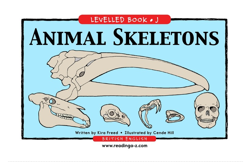 Book Preview For Animal Skeletons Page 1
