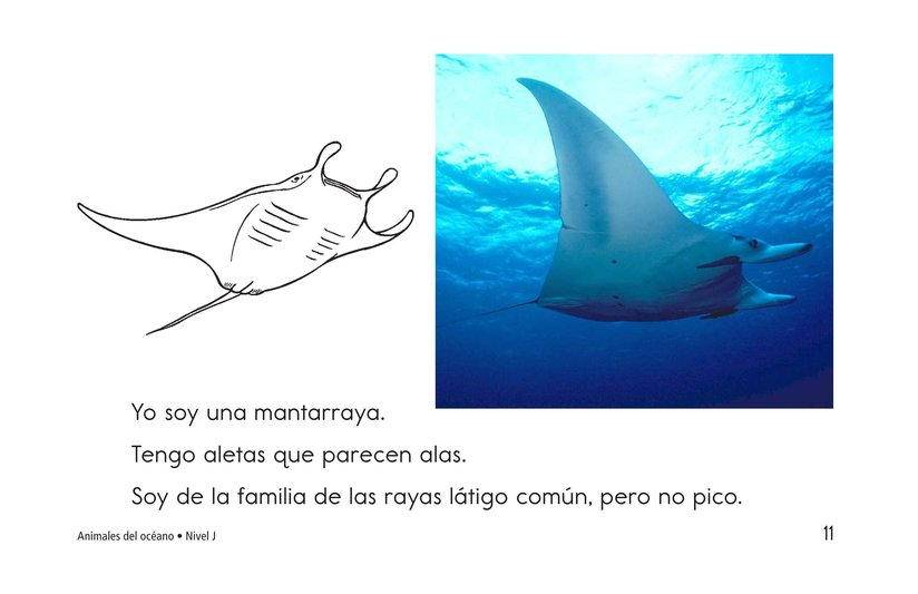 Book Preview For Ocean Animals Page 11