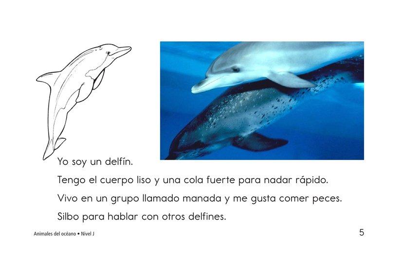 Book Preview For Ocean Animals Page 5