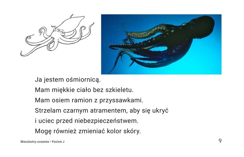 Book Preview For Ocean Animals Page 9