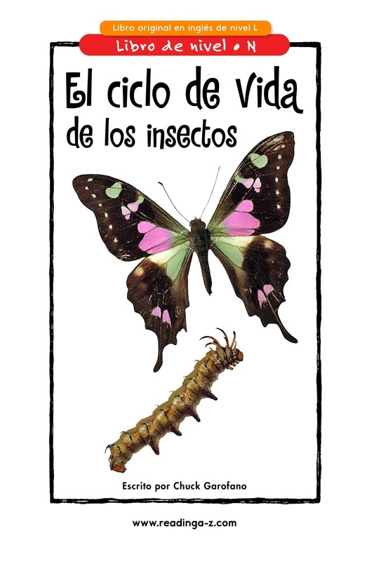 Book Preview For Insect Life Cycle Page 1