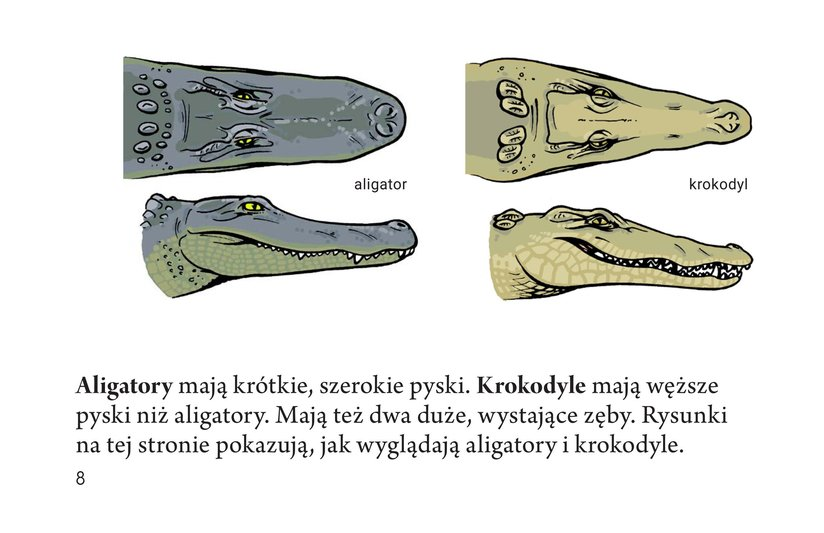 Book Preview For Crocs and Gators Page 8