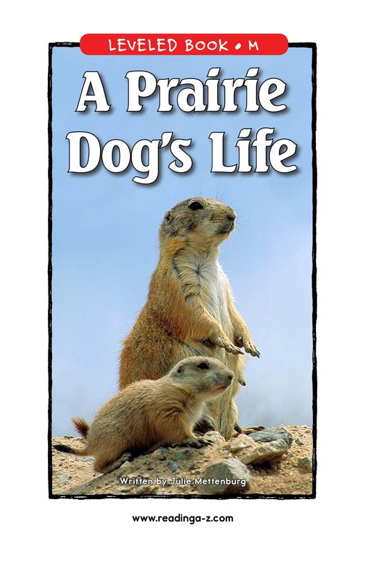Book Preview For A Prairie Dog's Life Page 1