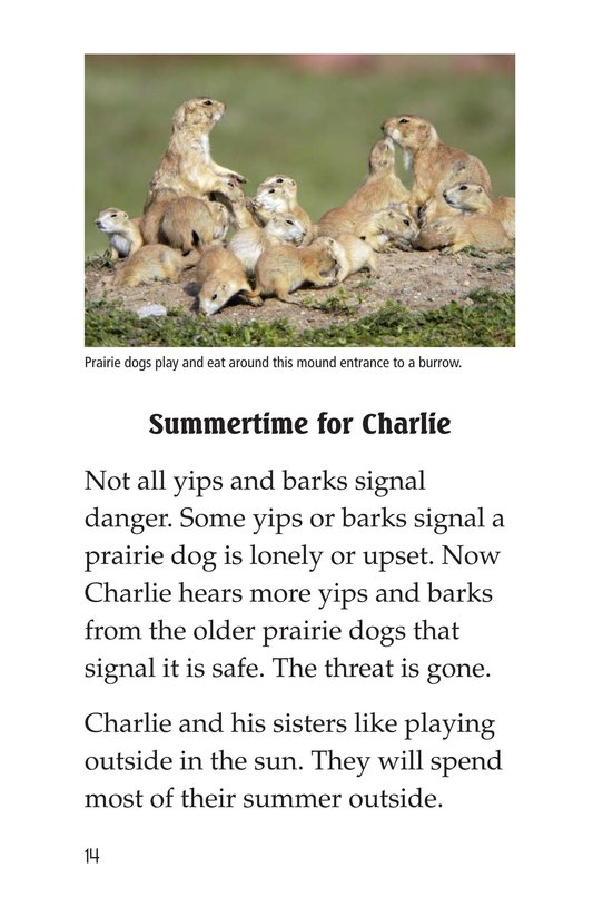 Book Preview For A Prairie Dog's Life Page 14