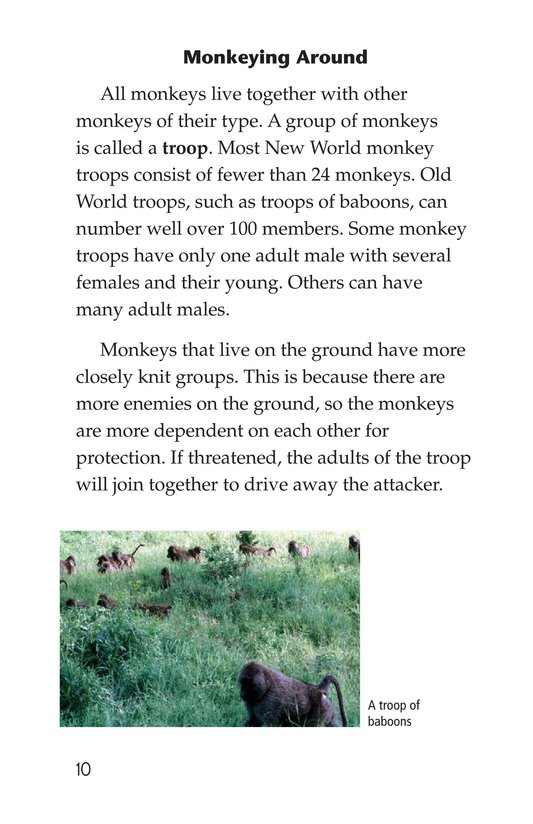 Book Preview For Monkey Business Page 10