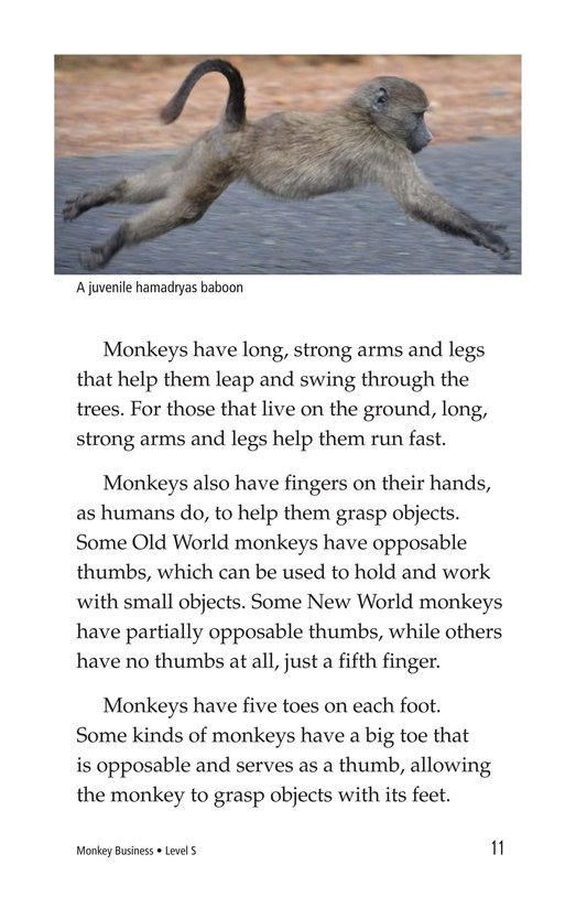 Book Preview For Monkey Business Page 11