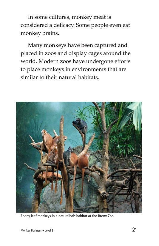 Book Preview For Monkey Business Page 21