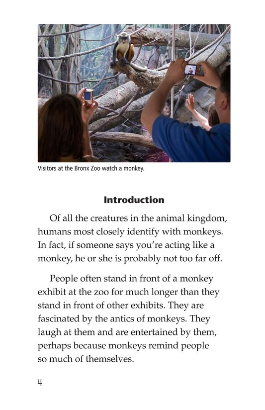 Book Preview For Monkey Business Page 4