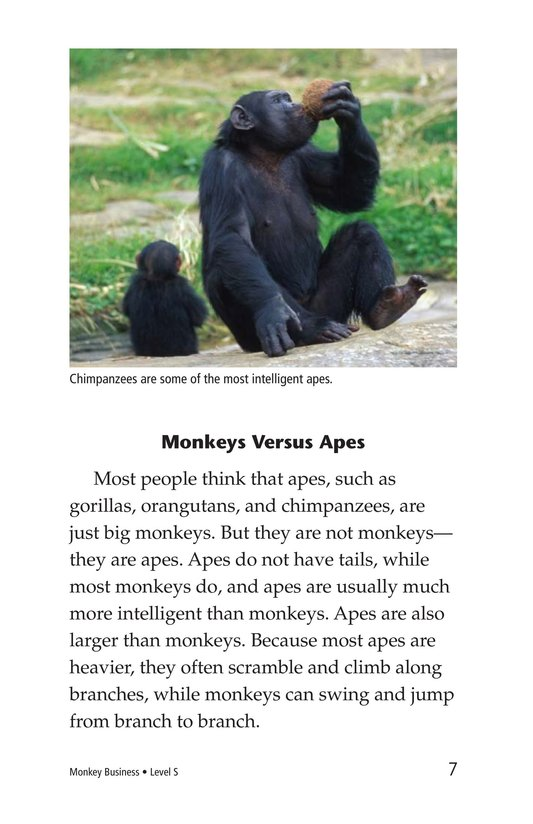 Book Preview For Monkey Business Page 7