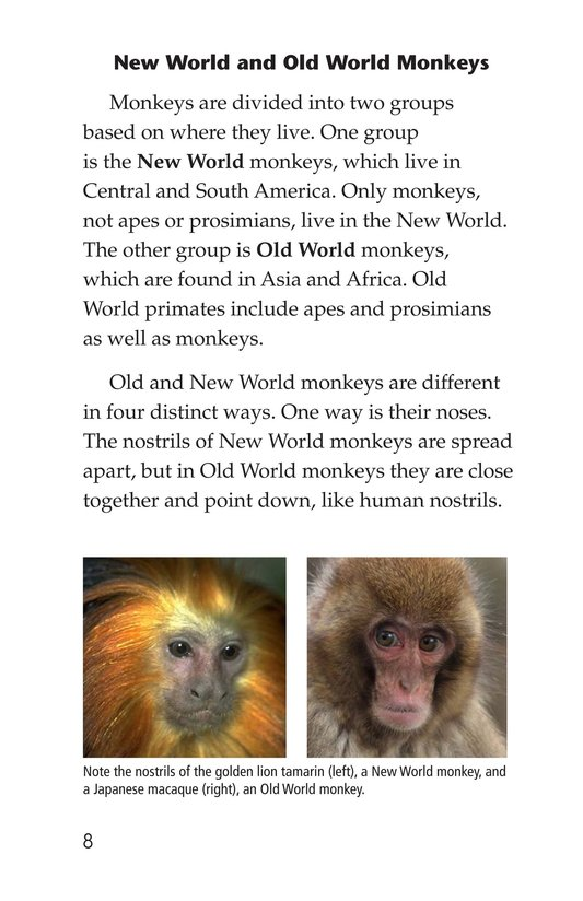 Book Preview For Monkey Business Page 8