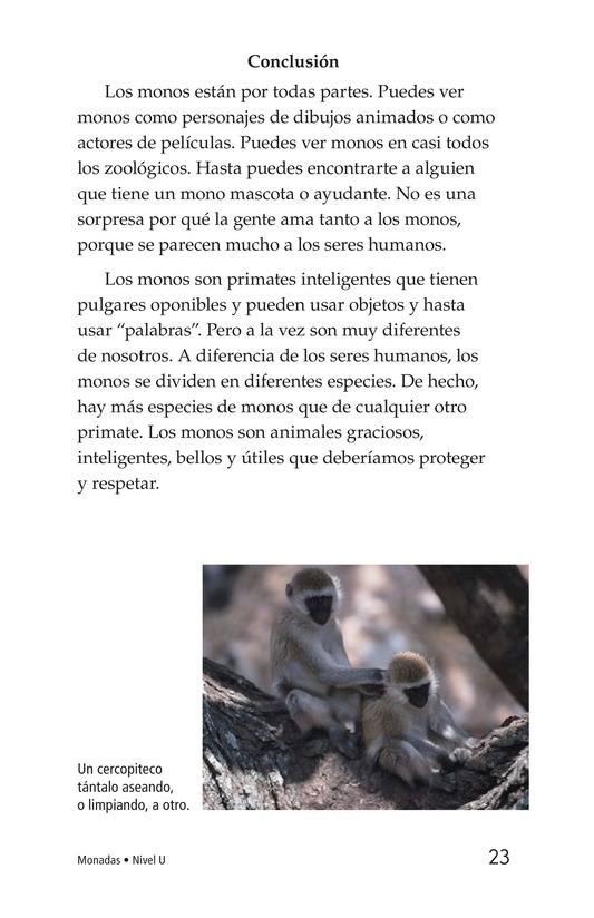 Book Preview For Monkey Business Page 23