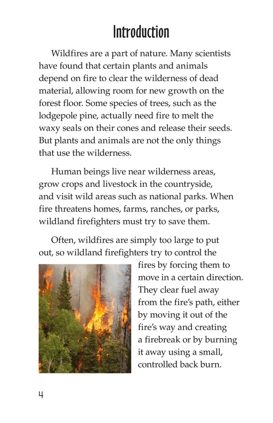 Book Preview For The Firefighter Page 4