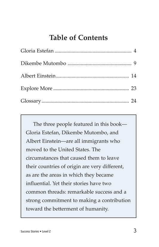 Book Preview For Success Stories Page 3
