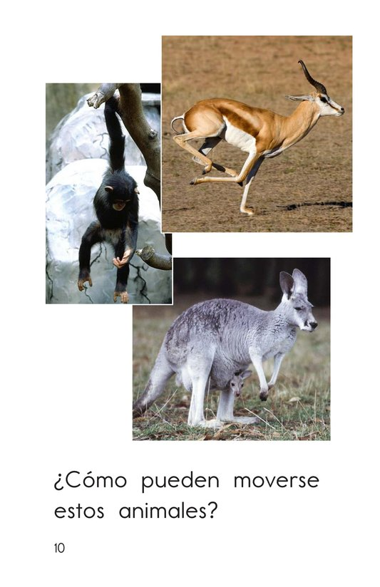 Book Preview For Animals Can Move Page 10