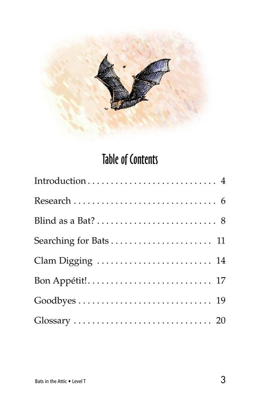 Book Preview For Bats in the Attic Page 3