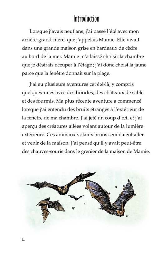 Book Preview For Bats in the Attic Page 4