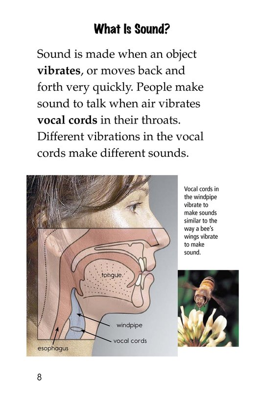 Book Preview For Sound All Around Page 8