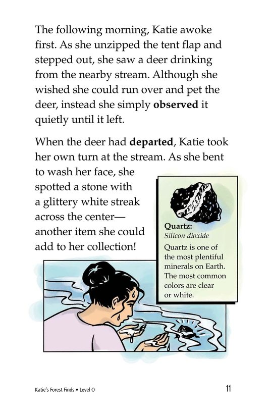 Book Preview For Katie's Forest Finds Page 11