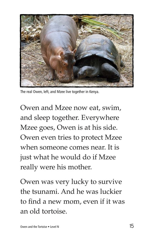 Book Preview For Owen and the Tortoise Page 15