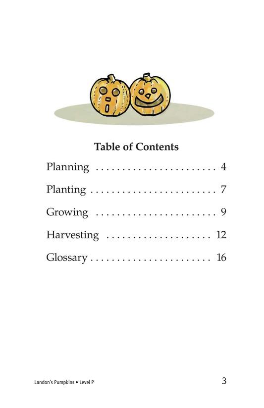 Book Preview For Landon's Pumpkins Page 3
