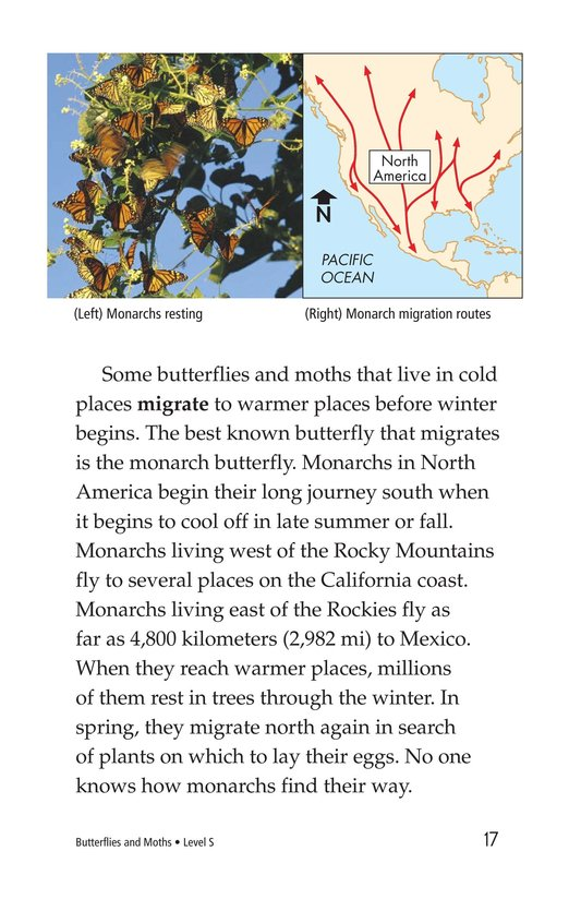 Book Preview For Butterflies and Moths Page 17
