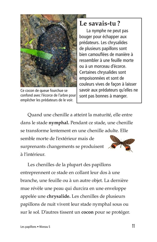 Book Preview For Butterflies and Moths Page 11