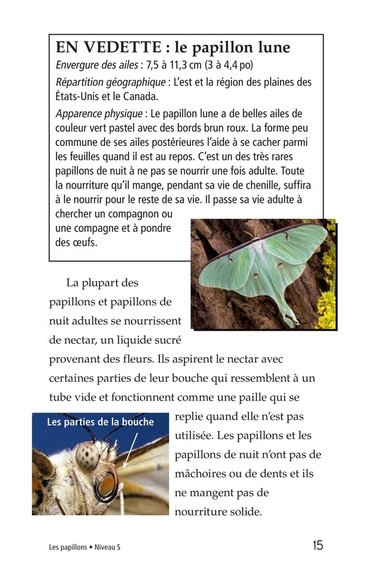 Book Preview For Butterflies and Moths Page 15