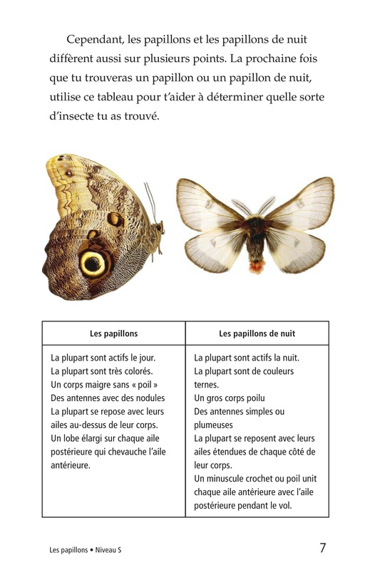 Book Preview For Butterflies and Moths Page 7