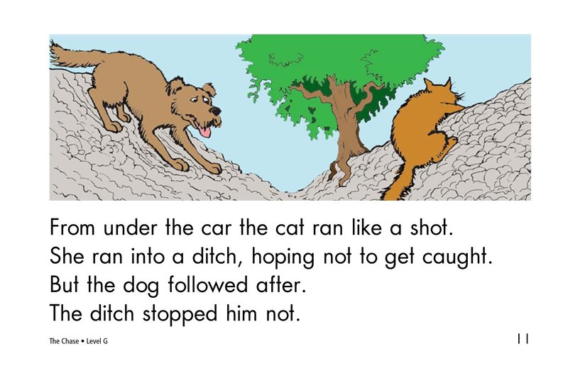 Book Preview For The Chase Page 11