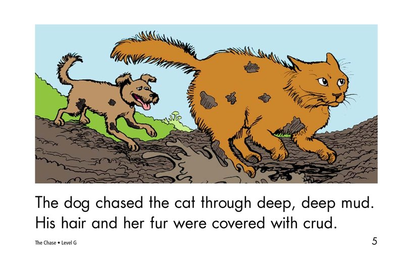 Book Preview For The Chase Page 5