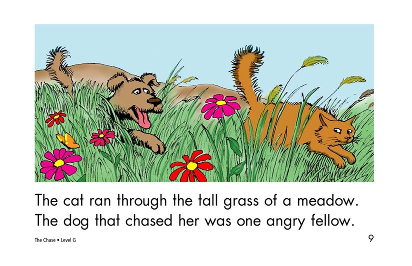 Book Preview For The Chase Page 9