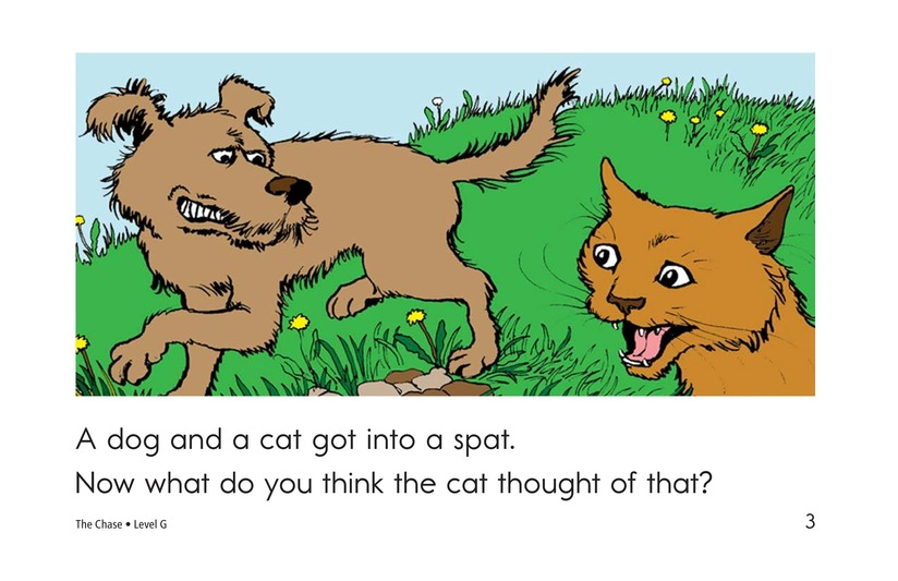 Book Preview For The Chase Page 3