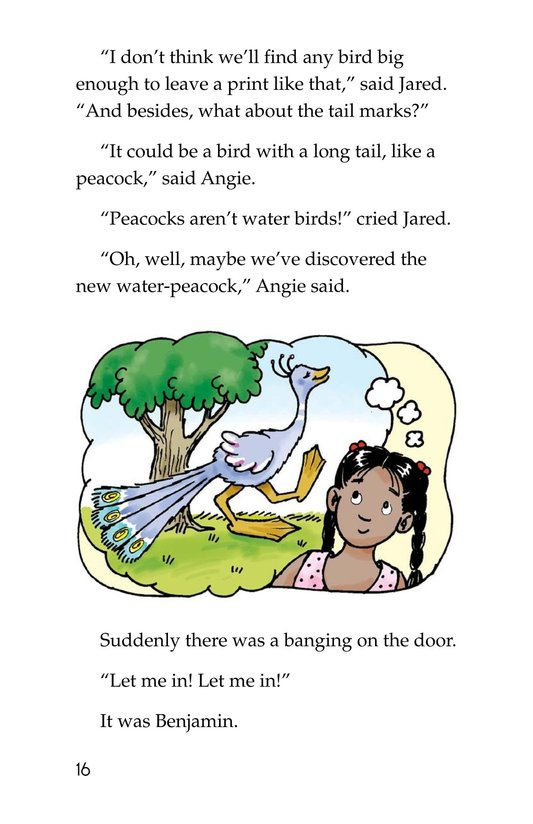Book Preview For The Footprint Page 16