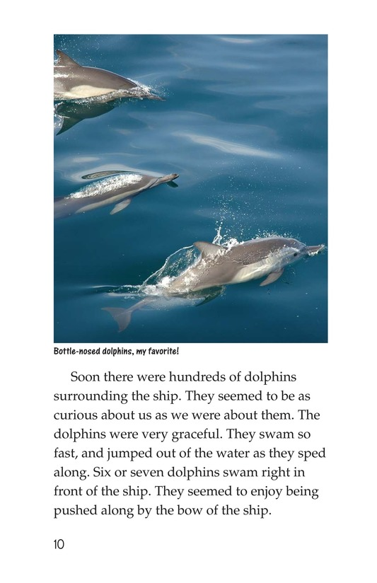 Book Preview For Charlene's Sea of Cortez Journal Page 10