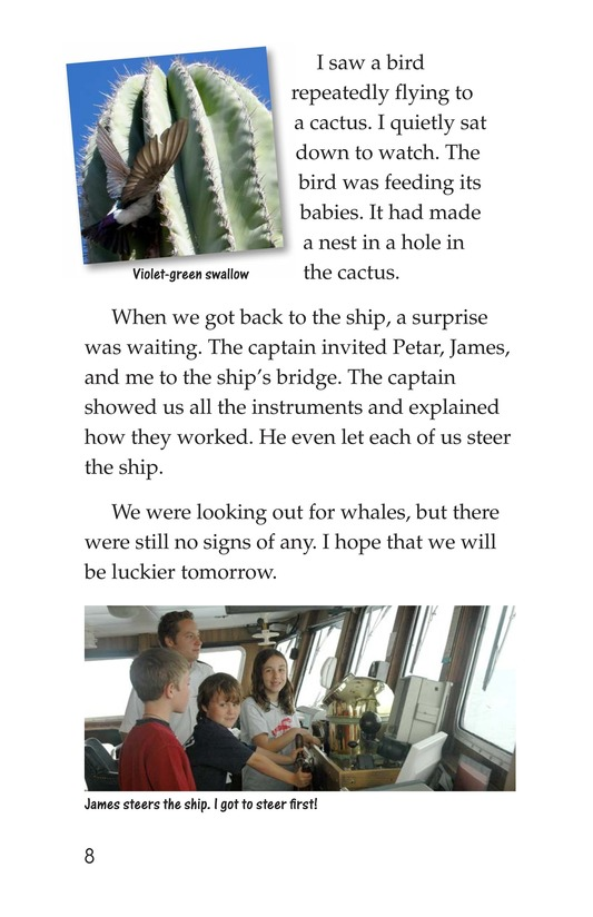 Book Preview For Charlene's Sea of Cortez Journal Page 8