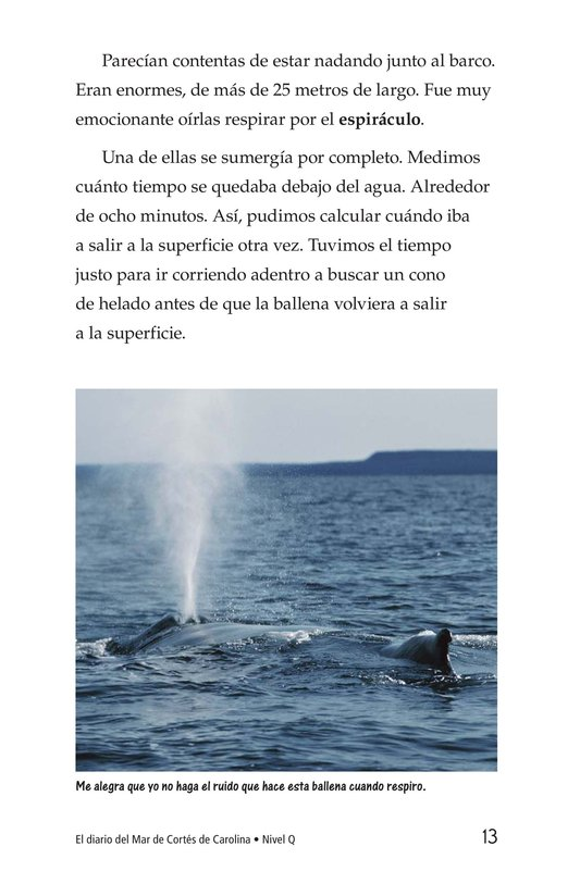 Book Preview For Charlene's Sea of Cortez Journal Page 13