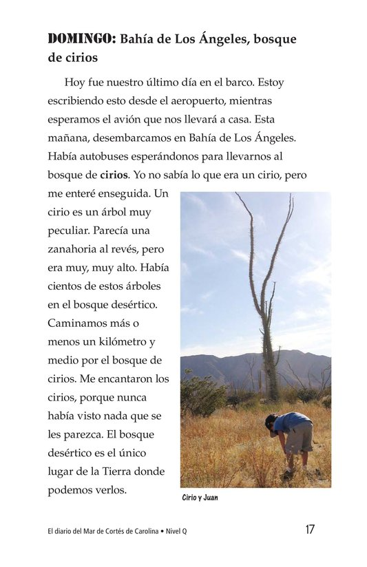 Book Preview For Charlene's Sea of Cortez Journal Page 17