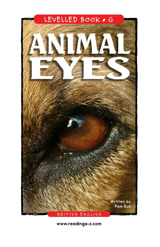 Book Preview For Animal Eyes Page 1