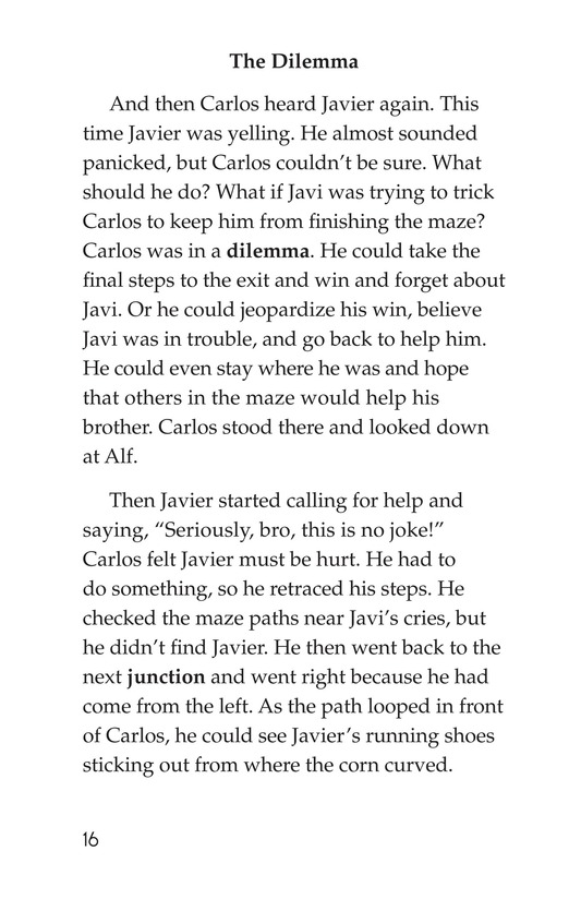 Book Preview For Carlos's Puzzle Page 16