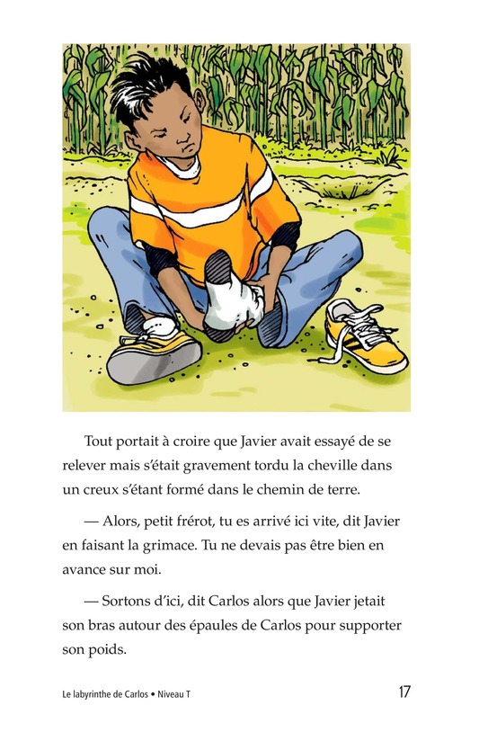 Book Preview For Carlos's Puzzle Page 17