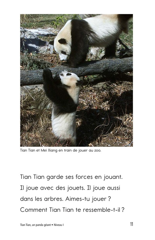Book Preview For Tian Tian, a Giant Panda Page 11