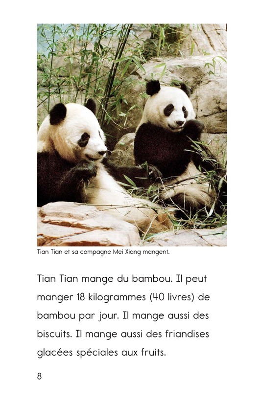 Book Preview For Tian Tian, a Giant Panda Page 8