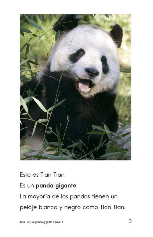 Book Preview For Tian Tian, a Giant Panda Page 3