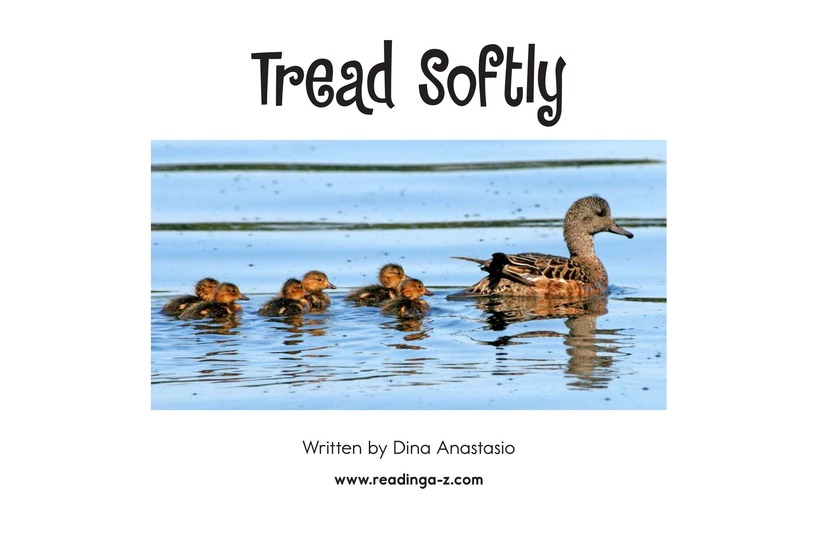 Book Preview For Tread Softly Page 2