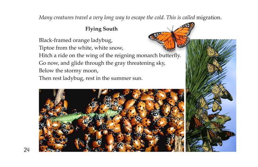 Book Preview For Tread Softly Page 24