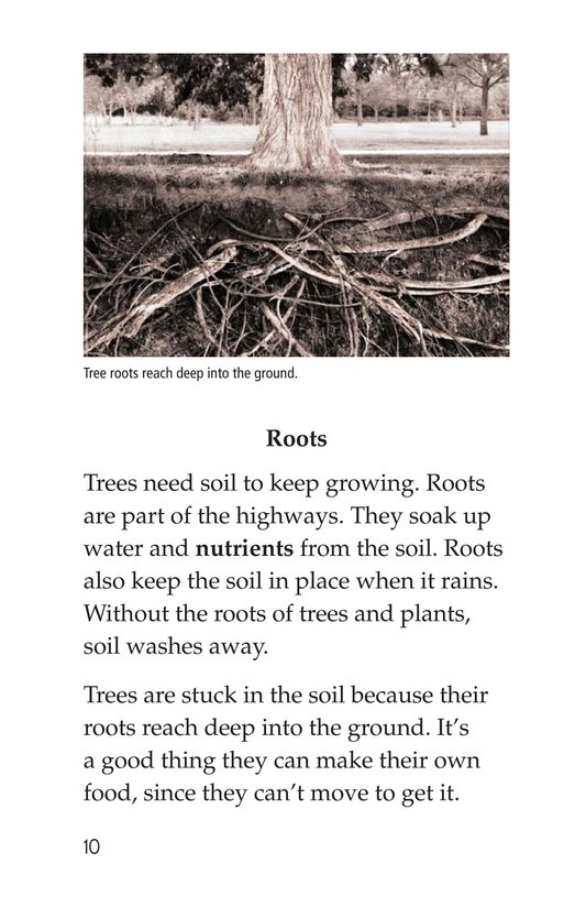 Book Preview For About Trees Page 10
